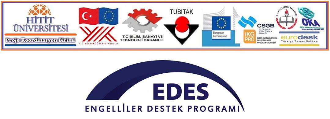 Engelliler Destek Programı (EDES) 2015 Proje Teklif Çağrısı