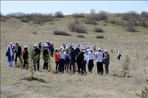 Üniversitemiz ile Orman İşletme Müdürlüğü İşbirliğinde Fidan Dikimi Gerçekleştirildi