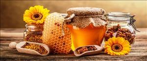 Arıcılık ve Arı Ürünleri Uygulama ve Araştırma Merkezi Yönetmeliği Resmi Gazetede Yayınlandı