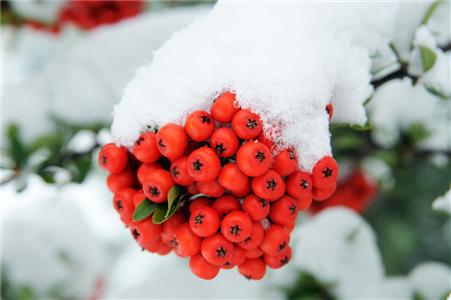 Hitit'te Kış da Farklı Bir Güzel