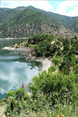 Su Ürünleri ve Su Sporları Uygulama ve Araştırma Merkezi