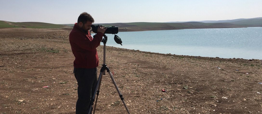 Obruk Barajı Kuş Sayım Çalışmaları